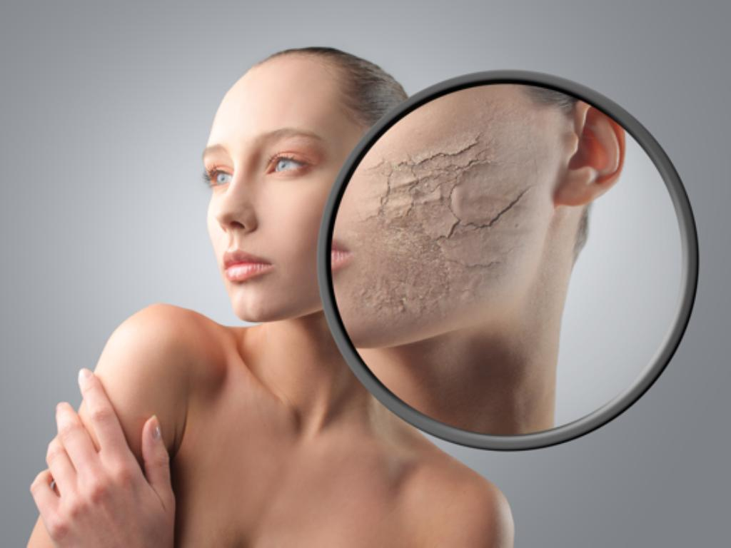 Программа регенерации поврежденной кожи